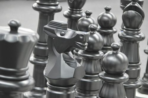 chess pieces knight chess