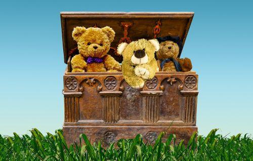 chest box treasure