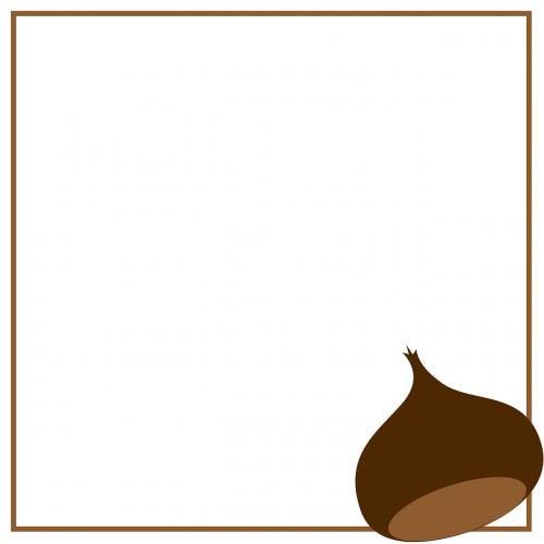 chestnut chestnuts autumn