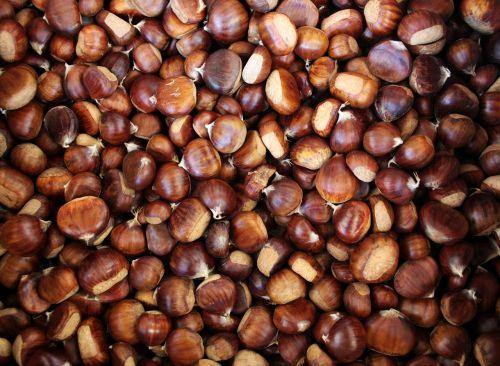 chestnuts chestnut autumn