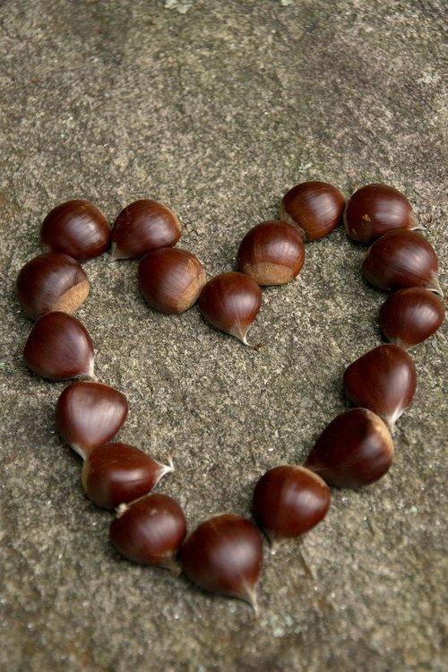 chestnuts  galicia  love