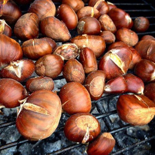 chestnuts magosto autumn