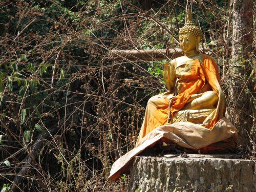 chiang mai ganesha thailand