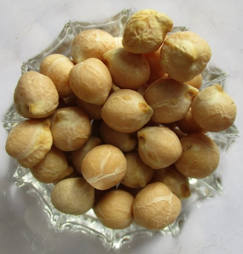 chickpeas  legumes  food