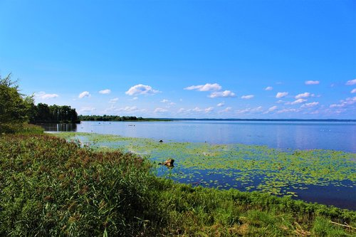 chiemsee  nature reserve  view