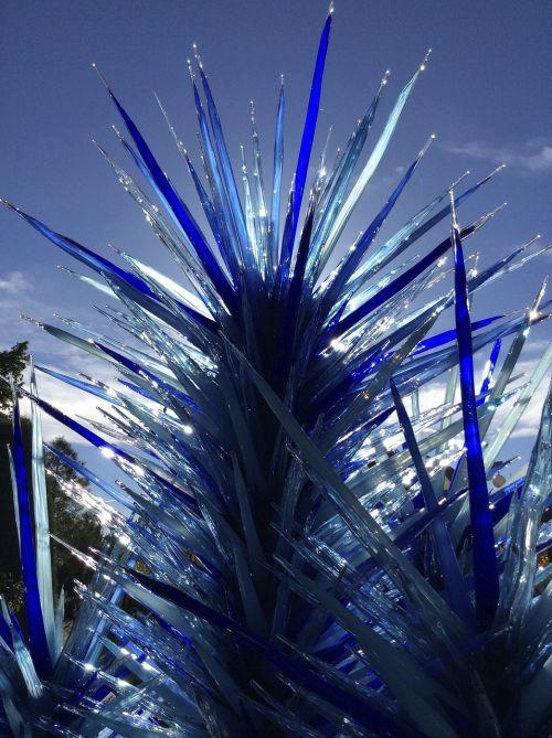 chihuly,botanikos sodai,Denveras,menininkas,stiklas,botanikos,mėlynas,stiklo valymas,sodas,apdaila,lauke