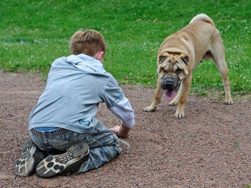 child dog play