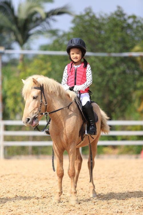 child equestrian pony horse