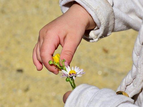 child  girl  hand