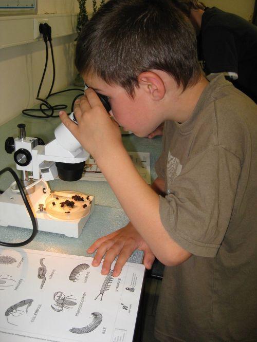 children activities microscope