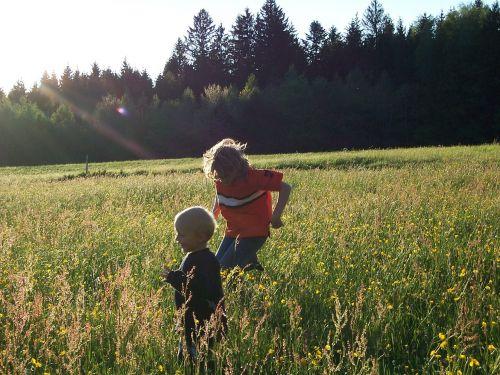 vaikai,pieva,miškas,žaisti,berniukas,gamta,vasara,vaikai,gėlės
