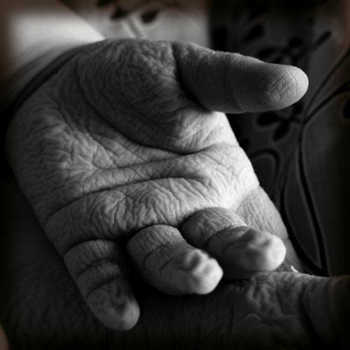 children hand creasy