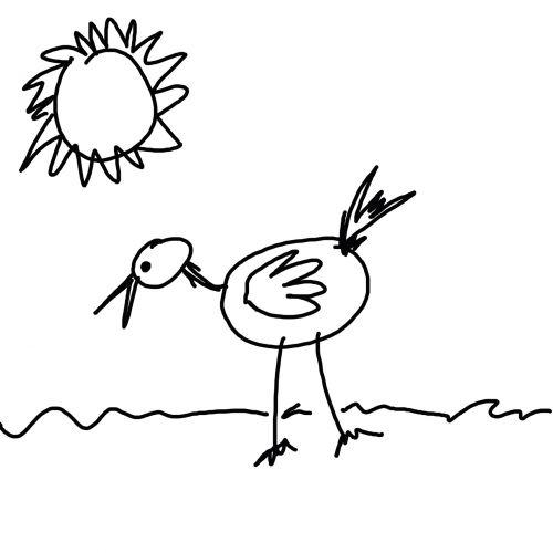 Child's Bird Drawing