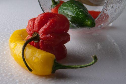 chili chilli pepper pepperonicini