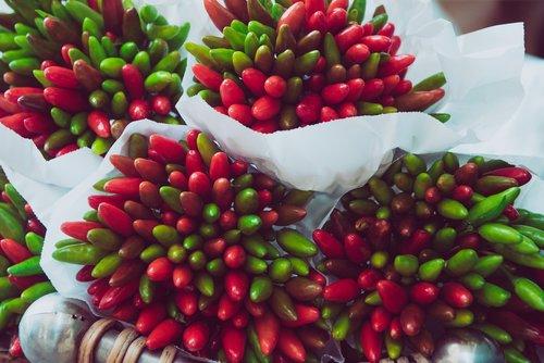 chili  chilli pepper  peppers