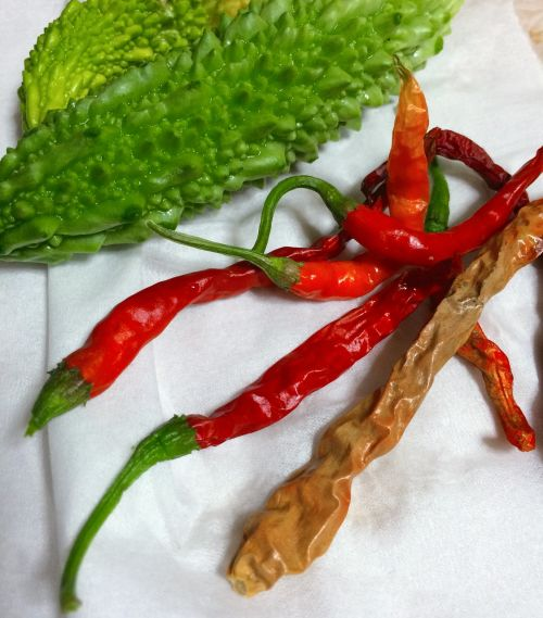 chili pepper gouya vegetables