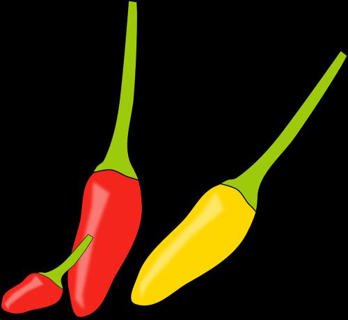 chilli spices hot