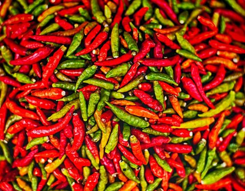 chilli pepper spicy