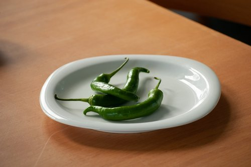 chilli pepper  green  plate