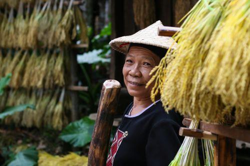 china asia chinese woman
