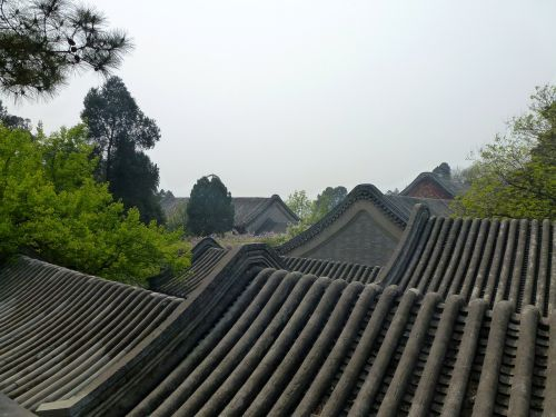china the roof of the beijing