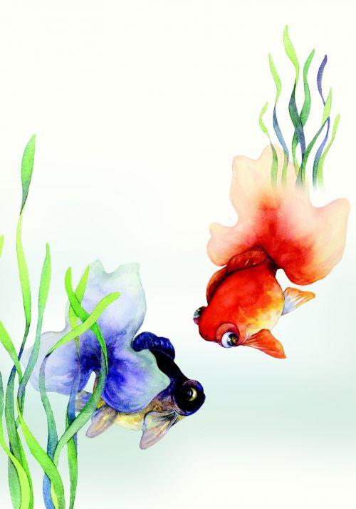 china wind illustration goldfish