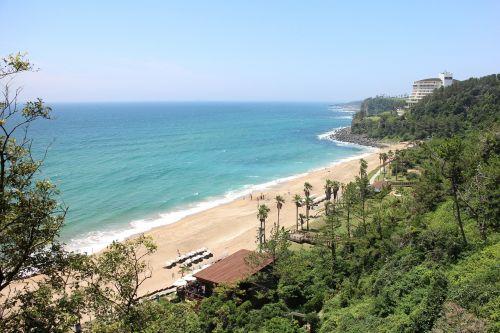 kinai,Jeju viešbučiai,privatus paplūdimys,kinų paplūdimys,jūros pušys,papludimys,dangus,jūra,poryt,pakrantės