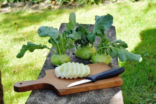 chinese cabbage ' kohlrabi kalarepka vegetables