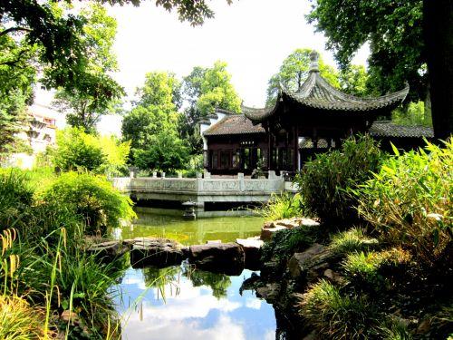 Chinese Garden XII