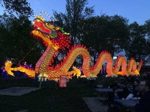 chinese new year chinese dragon
