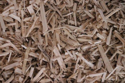 chip wood  wood  litter