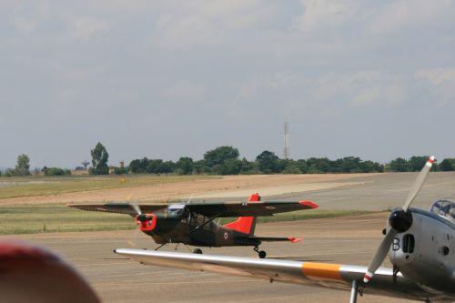 Chipmunk Parked With Bosbok Running