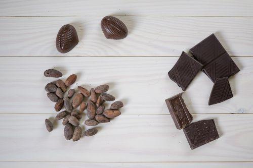 chocolate cocoa beans cocoa