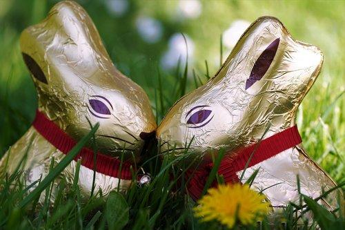 chocolate  bunny girl  easter