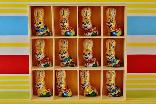 chocolate bunnies easter easter bunny