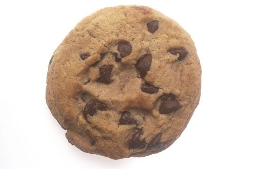chocolate chip cookie snack sweet