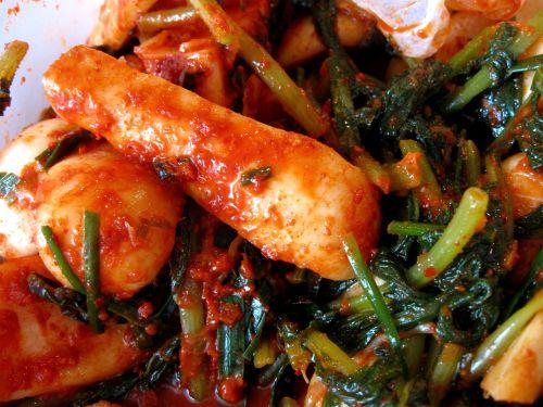 chonggak kimchi radish korean