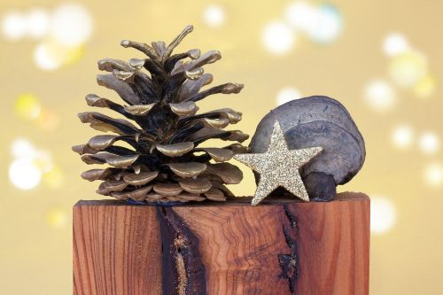 christmas pine cones star