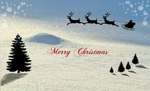 christmas christmas card winter