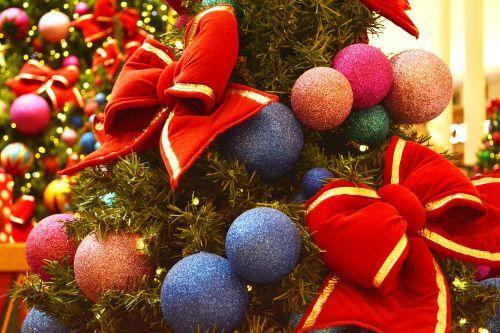 christmas pinheirinho christmas tree