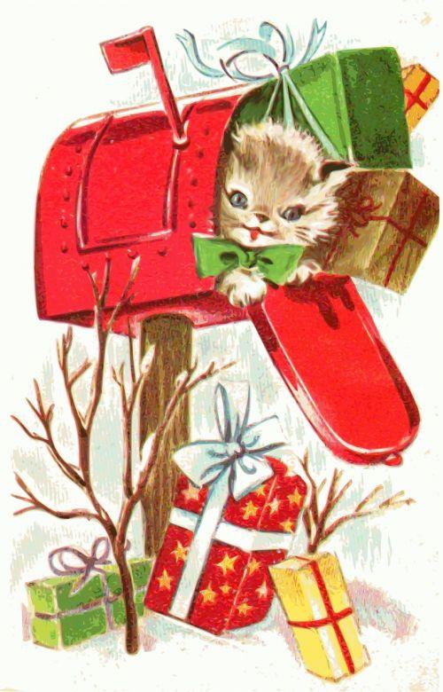 christmas kitten animal