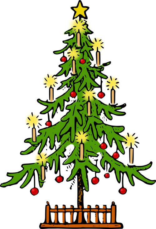 christmas,christmas tree,conifer,fir,holiday,lutz,plant,seasonal,spruce,tree,xmas,xmas tree,free vector graphics