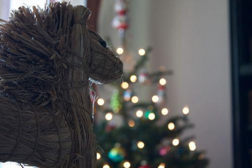christmas horse cute