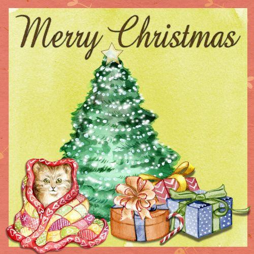 christmas cat star