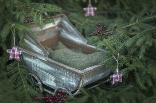 Kalėdos,skaitmeninis fonas,naujagimis,gamta,skaitmeninis,kaimiškas,lėlių vežimėliai