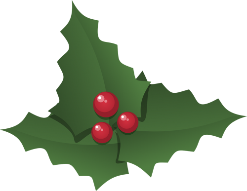 christmas holly holly leaves