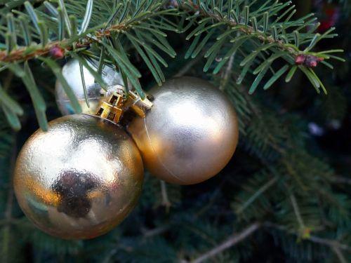 christmas balls fir
