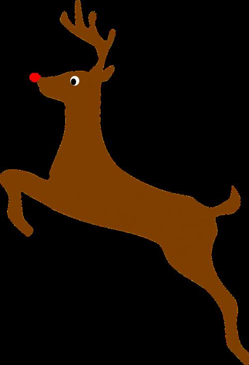 christmas holiday reindeer