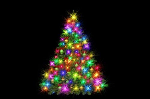 christmas  christmas tree  advent
