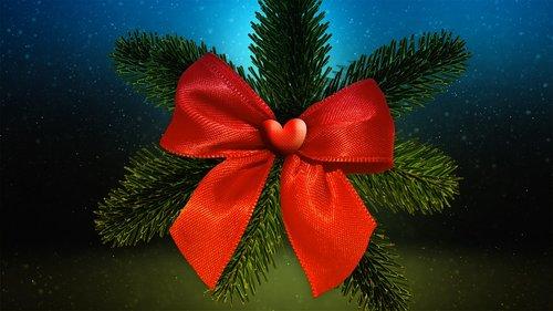 christmas  fir tree  tannenzweig